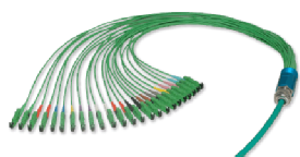Multiple Fibre